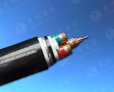 天津船用耐火电力电缆