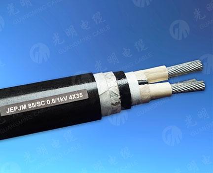 天津舰船用水密电力电缆